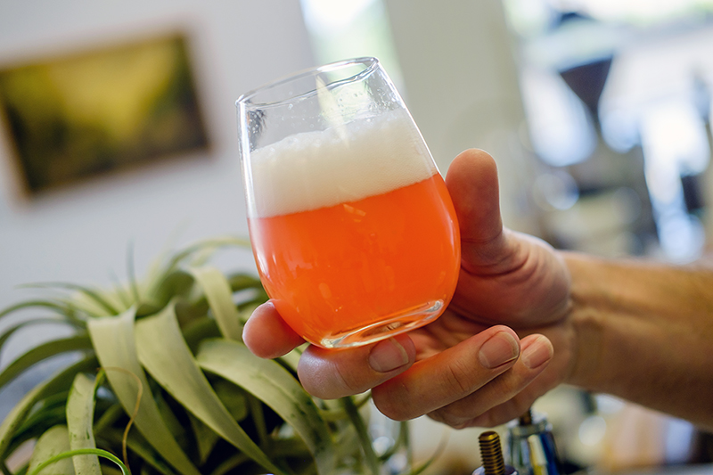 Kombucha 101, Health Benefits, Meet the brewer of Lunar Infusions